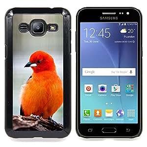 """For Samsung Galaxy J2 / J200 Case , Las plumas de pájaro rojo anaranjado Furry Pico"""" - Diseño Patrón Teléfono Caso Cubierta Case Bumper Duro Protección Case Cover Funda"""
