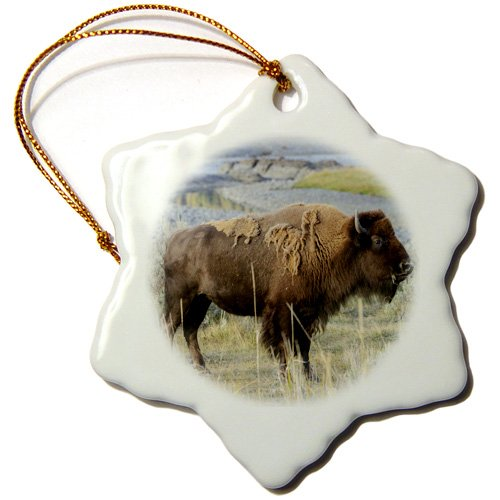 3dRose orn_149115_1 Bison Wildlife, Yellowstone River, Wyoming, Usa Us51 Tno0031 Tom Norring Snowflake Ornament, Porcelain, 3-Inch