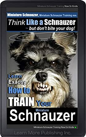 how to train your dog to bite intruders