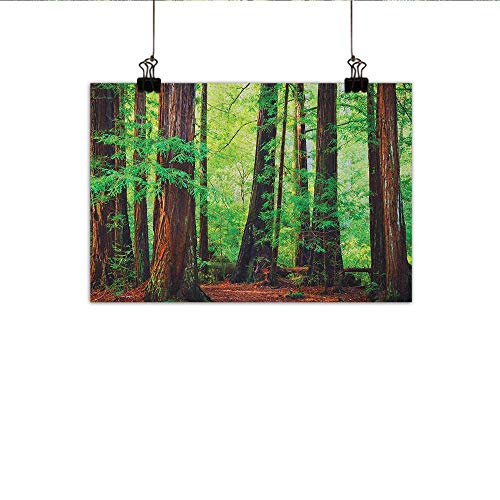 (Littletonhome Woodland Chinese Classical Oil Painting Redwood Trees Northwest Rain Forest Tropical Scenic Wild Nature Lush Branch for Living Room Bedroom Hallway Office 35