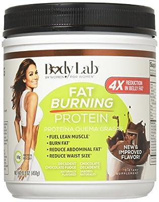 Basic Research FBL Fat Burning Protein Choc 15.9 oz.(450g)