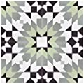 """Rustico Tile and Stone RTS21 Casablanca Green Cement Tile Pack of 13, 8""""x 8, Black/White"""