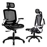 Gabrylly Ergonomic Mesh Office Chair, High Back