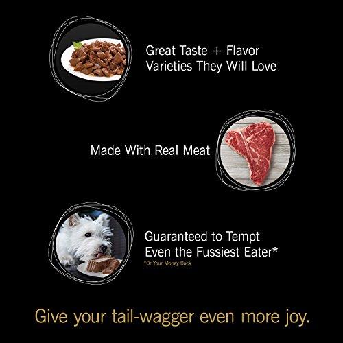 CESAR GOURMET FILETS Paquete de variedades de sabores de mignon de filete de mignon para alimentos de perro mojado y Nueva York, (12) 3.5 oz. Bandejas