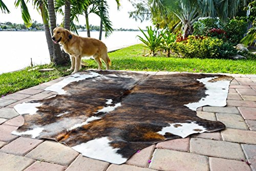 RODEO Amazing Cowhide Skin Rug Tricolor Brown Large Size Cowhide Leather Skin Hide Rugs
