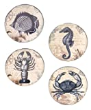 Certified International Coastal Postcards Canape Plate, 6-Inch, Assorted Designs, Set of 4
