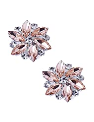 ElegantPark AJ Multi Color Sparkling Crystal Rhinestones Flower Shoes Decoration Fashion Dress Shoes Hat Handbag Clips 2 Pcs