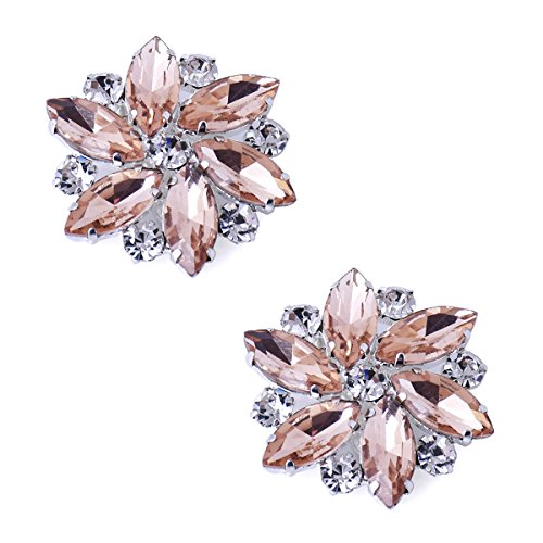 ElegantPark AJ Shoes Dress Hat Accessories Fashion Rhinestones Crystal Shoe Clips 2 Pcs Blush