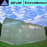 DELTA Canopies - Large Heavy Duty Green House Walk in Greenhouse Hothouse 20' X 10' 125 Pounds
