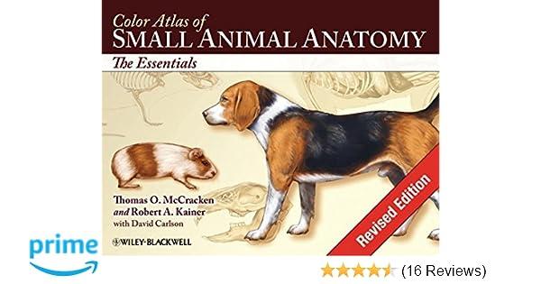 Color Atlas Of Small Animal Anatomy The Essentials 9780813816081