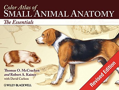 Color Atlas of Small Animal Anatomy: The Essentials by Brand: Wiley-Blackwell
