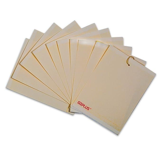 G2PLUS - Trampas adhesivas para moscas, insectos, piojos (10 unidades).: Amazon.es: Jardín