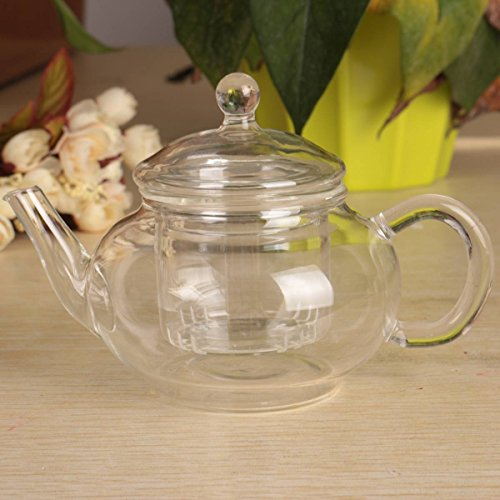 KINGSO Heat Resistant Elegant Glass Teapot with Infuser Filter 250ml / 8oz (250ml Teapot compare prices)