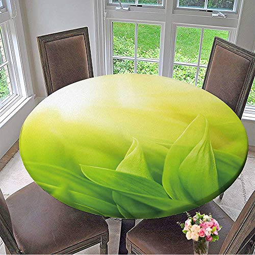 Mikihome Chateau Easy-Care Cloth Tablecloth Fresh Green Grass (Shallow DoF) for Home, Party, Wedding 31.5