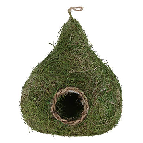 (Flameer Birdhouse Nest Breeding Box Wild Grass Canary Finch Budgie House Green Gourd)