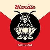 Pollinato