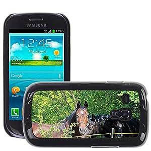 Etui Housse Coque de Protection Cover Rigide pour // M00112023 Caballos Caballos Animales de Brown // Samsung Galaxy S3 MINI i8190