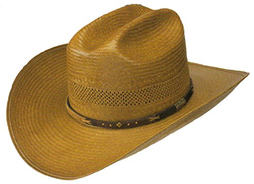 Stetson Cowboy Hat Back Country Straw Hat (7 3/8) Cognac