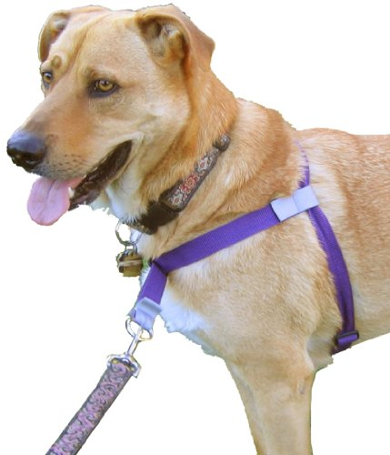 Walk Your Dog With Love Front-leading, No-pull Dog Harness. The World's Best Dog Harness (Deep Purple, 25 – 60 lbs), My Pet Supplies