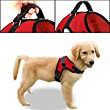 Copatchy No Pull Reflective Adjustable Dog