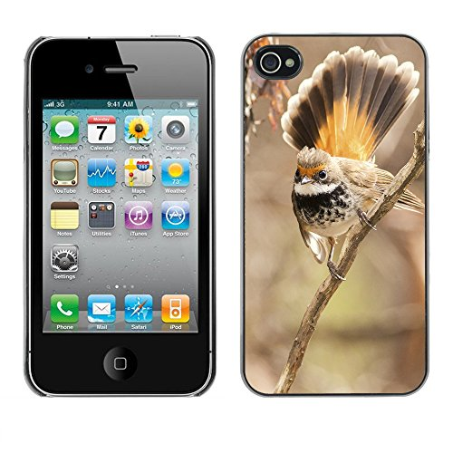 Premio Sottile Slim Cassa Custodia Case Cover Shell // F00012523 oiseau // Apple iPhone 4 4S 4G