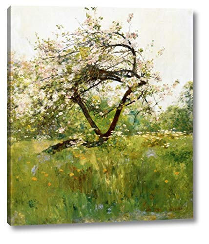 Peach Blossoms - Villiers-le-Bel by Frederick Childe Hassam - 19