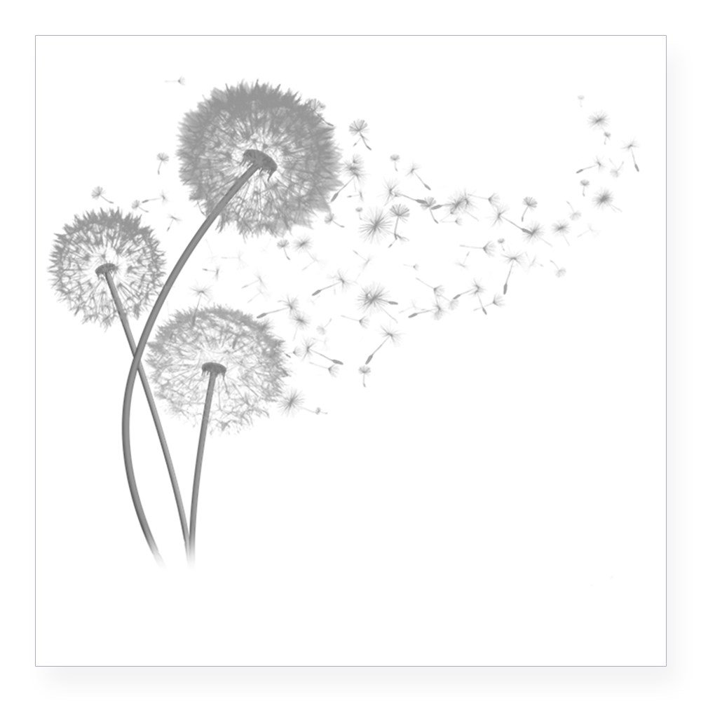 Amazon com cafepress dandelion wishes square sticker 3 x 3 square bumper sticker car decal 3x3 small or 5x5 large home kitchen