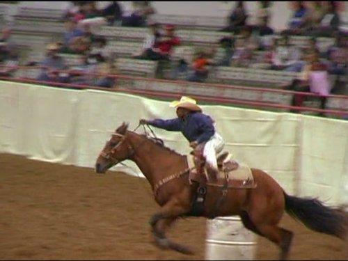 Rodeo Cowgirl (Houston, Texas) (Cartoon Cowgirl)
