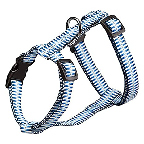 arppe 4177012007 Arnés Nylon Gradiente, Azul: Amazon.es: Productos ...