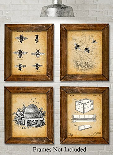 Bee Keeper Patent Prints serves as a bee gift for home decor