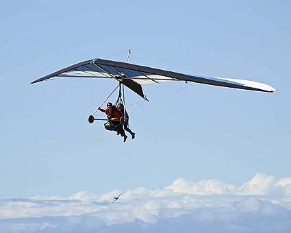 Amazon com: Hang Glider 11 by Toula Mavridou-Messer Art