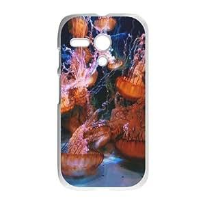 C-U-N5085012 Phone Back Case Customized Art Print Design Hard Shell Protection Motorola G