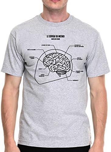 Camiseta para hombre gris, estilo motero – el cerebro del motociclista (varios tamaños): Amazon.es: Coche y moto