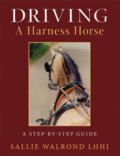 Driving a Harness Horse: A Step-By-Step Guide