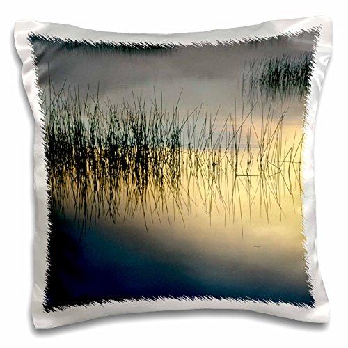 Danita Delimont - Lakes - New York, Adirondacks, Moose Lake, Reeds, Sunrise - US33 BJA0003 - Jaynes Gallery - 16x16 inch Pillow Case (pc_93032_1) Contemplation Moose