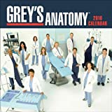 Grey's Anatomy: 2010 Mini Wall Calendar