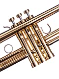 Trumpet Trim Kit for improving the sound. for all Carol Brass Trumpet. Custom made KGUBrass Trumpet caps (MEDIUM, Raw Brass)