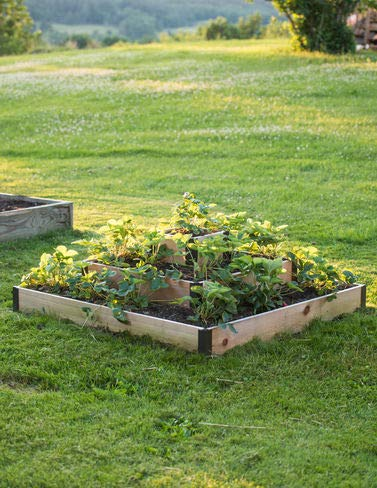 Amazon Com Gardener S Supply Company 3 Tier Strawberry Bed