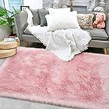 Terrug Ultra Soft Shag Bedroom Rugs,Luxury Pink
