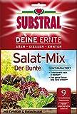 Substral Deine Ernte Salat-Mix Der Bunte  - 250 g