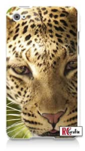 Serious Leopard Wild Exotic Cat Close Up Shot Apple ipod 4 Quality Hard Case Snap On Skin for ipod 4/4G (WHITE)