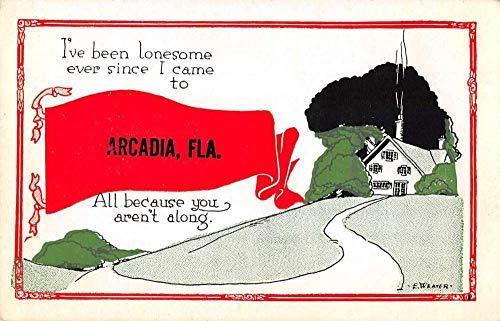 Arcadia Florida Greetings Pennant Flag Vintage Postcard JF686296