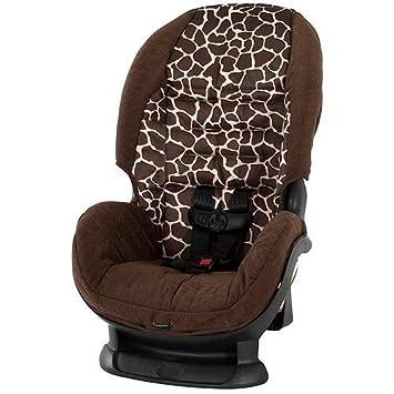 Amazon.com : Cosco - Scenera Convertible Car Seat, Quigley ...