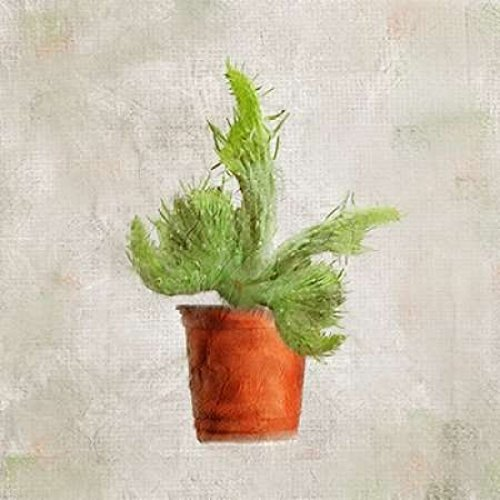 24 x 24 Potted Life 2 Poster Print by Kimberly Allen