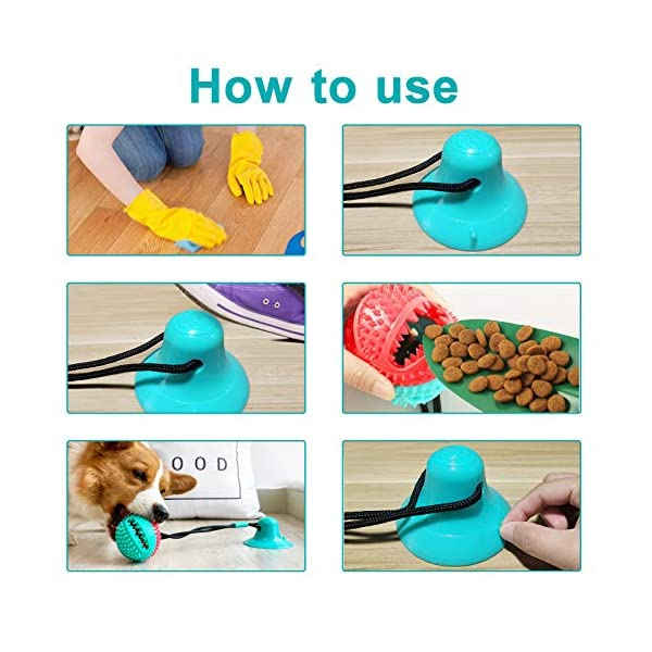 DGGHOMY Suction Cup Dog Toy, Dog Chew Toy, Interactive Rope Ball with  Powerful Sucker, Dog Tooth Cleaning Toy, Food… - Perfectforpooch.com