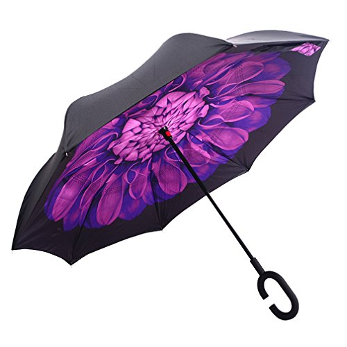DOLIROX Windproof Reverse Folding Double Layer Inverted Umbrella and Rain Protection Umbrella with C-shaped Hands Free Handle, Best for Travelling and Car Use (Balck Purple)