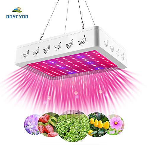 6W Led Grow Light in US - 4