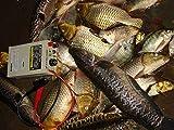 Hanchen Fish Shocker IGBT Fish Stunner Ultrasonic