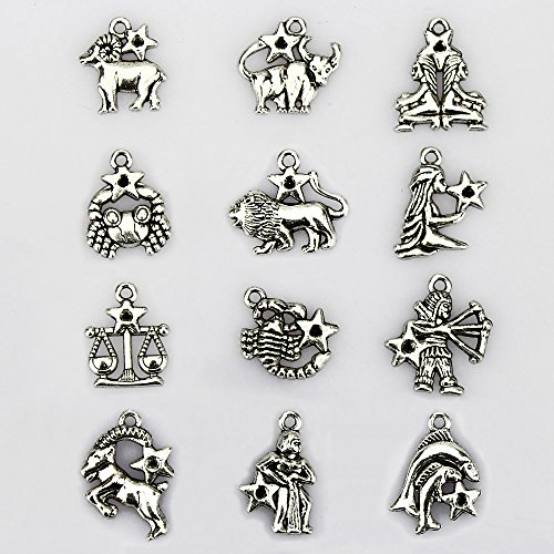 Bracelet Charm Pendant - LolliBeads (TM) 2 Sets of Zodiac Antiqued Tibetan Silver Bracelet Necklace Charms Pendants (24 Pcs)
