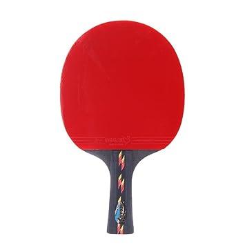 REGAIL Mesa de tennis Ping Pong Padel Bate Bolsa: Amazon.es: Deportes y aire libre
